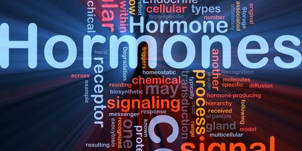 Background concept wordcloud illustration of Hormones hormonal s